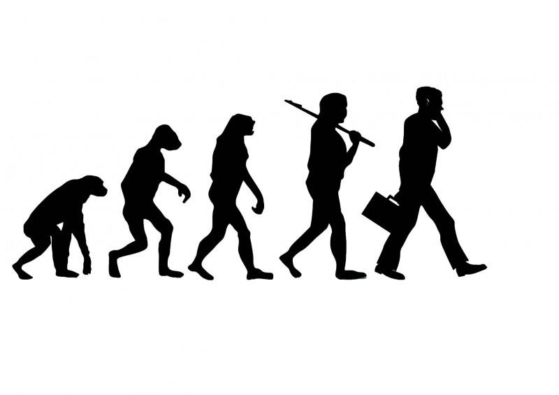 Image result for evolution science